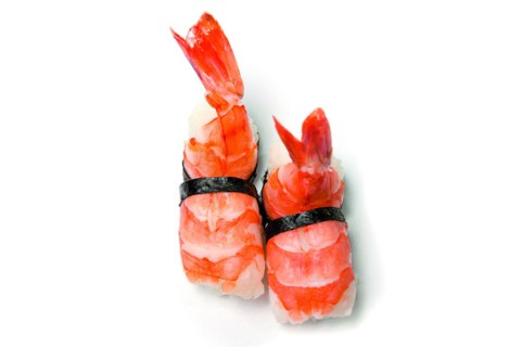 King (royal) shrimp